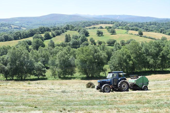 Xornada sobre asesoramento rural no contexto actual