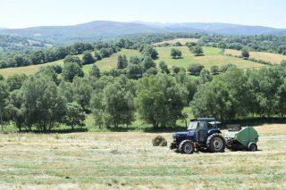 A fenolaxe en rotopacas: Unha técnica para darlle máis valor á herba