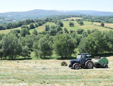 El henolaje en rotopacas: Una técnica para darle más valor a la hierba