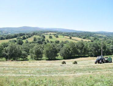 Medio Rural di que pagará antes de Nadal o 90% das axudas da PAC a quen teña os controis favorables