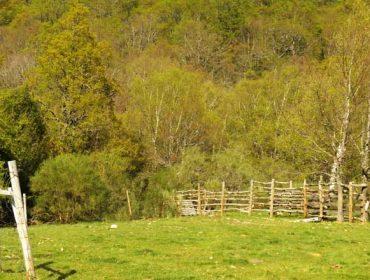 Medio Ambiente convoca axudas para zonas de Rede Natura e parques naturais