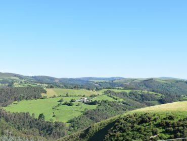 Galicia perdeu 60.000 hectáreas de terras de cultivo entre o 2012 e o 2021