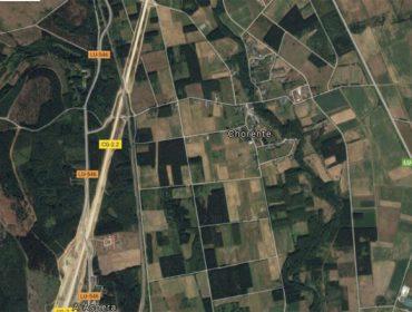 Primeiros pasos do plan de recuperación de terras abandonadas no Val de Lemos