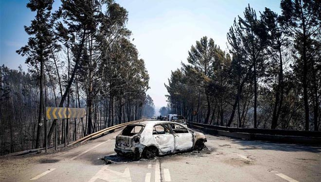 Que se pode aprender do tráxico incendio de Portugal?