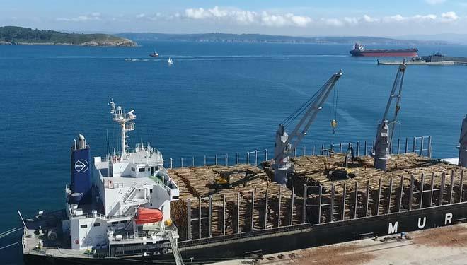 A exportación de piñeiro a China alivia os excedentes do mercado