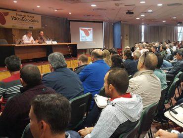 Arranca a IXP Vaca e Boi de Galicia