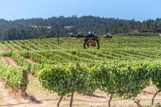 Lugo acollerá un simposio sobre o uso de drons e satélites en agricultura