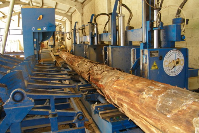 A Xunta crea a Axencia Galega da Industria Forestal para impulsar a innovación e o emprego no sector