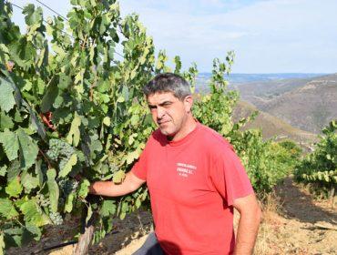 """""""Os viños do Bibei son moi diferentes do resto de Valdeorras"""""""