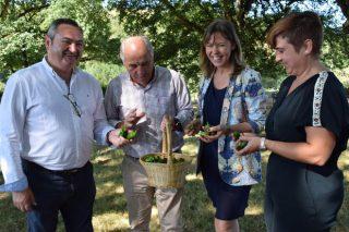 Esta fin de semana celébrase en Guntín a  XVI Festa do Pemento de Mougán