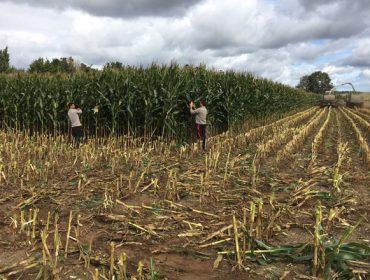 Acceder á terra, entre os maiores obstáculos para a incorporación de mozos ao agro