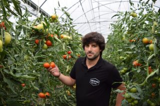 Horta da Lousa: lechugas y tomates con sabor, controlados desde el móvil