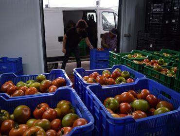 Coronavirus: Medio Rural anuncia que será máis flexible cos requisitos das subvencións