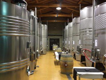 A trazabilidade e as normas APPCC: unha obriga ineludible para o sector do viño
