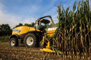Resultados por comarca da colleita de millo 2018 en Galicia