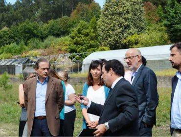 Reunión de seguimiento del plan de innovación forestal apoyado por Inditex