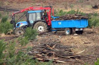 Cursos de certificación forestal, xestión de montes veciñais e prevención no uso de maquinaria