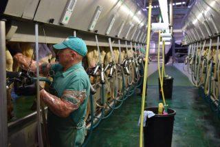 ¿En que Comunidades aumentó más la producción de leche en 2017?