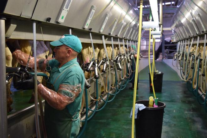 A Deputación de Lugo formará man de obra para o sector gandeiro e forestal