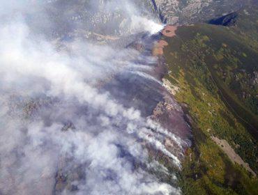 Dispárase o número de presuntos incendiarios detectados en Galicia