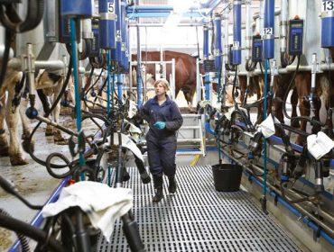Coronavirus: ¿Como afecta o estado de alarma a gandeiros e agricultores?