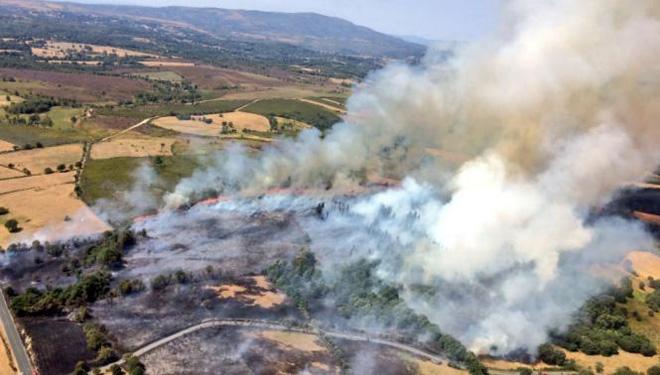 """""""Os gandeiros somos vítimas dos incendios forestais e podemos ser a solución"""""""