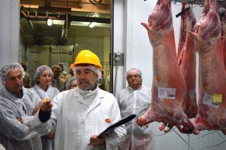 Primeiros pasos para aproveitar o gran potencial de mercado do cordeiro e o cabrito de Galicia