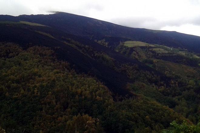 Unións advierte de que Ancares sigue sin permiso para usar pastos quemados