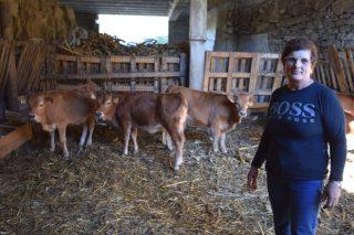 Unha vida dedicada á recuperación da raza Cachena