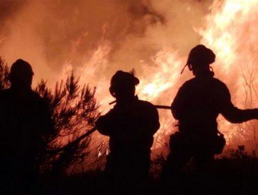 UCOGA axuda na tramitación de indemnizacións aos afectados polos incendios