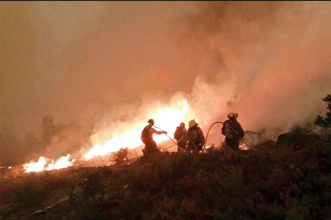 Petición dun plan para a restauración das areas forestais queimadas