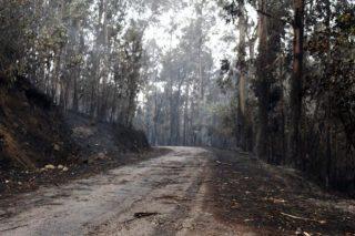 Reunión en Ponteareas de comunidades de montes e propietarios forestais afectados polos lumes