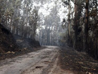 Reunión en Ponteareas de comunidades de montes y propietarios forestales afectados por los incendios