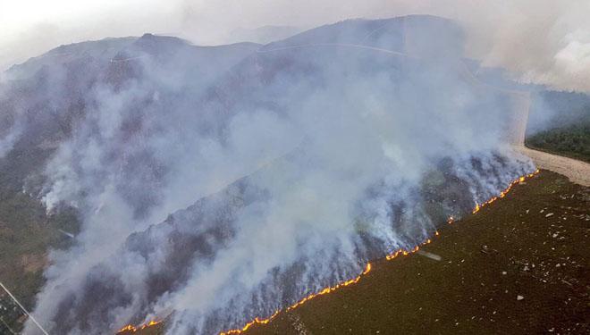 Domingo negro, cuatro muertos y más de 15.000 hectáreas arrasadas