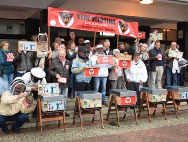 """Le reclaman a la Xunta  """"un plan de choque urgente"""" contra el avance imparable de la Vespa Velutina"""