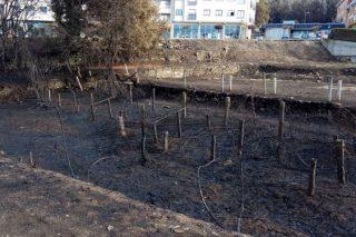"""CaixaBank e a Obra Social """"la Caixa"""" establecen un plan de axudas para os afectados polos incendios en Galicia"""