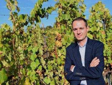 """""""O meu gran temor da crise do Covid19 no sector do viño é o abandono dos viticultores"""""""