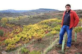 """""""A clave para a saúde do viñedo é localización en ladeira, poda en verde e clons menos produtivos"""""""