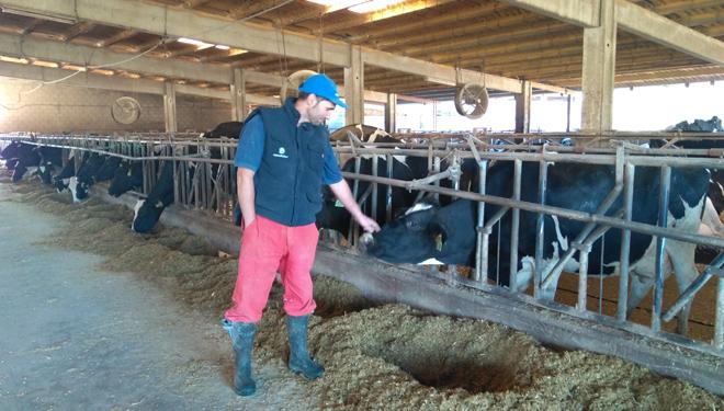 """""""UNIFORM-Repro axiliza o traballo do gandeiro e dos técnicos"""""""