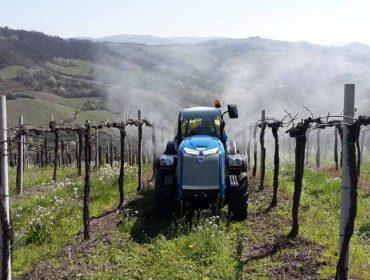 ¿Quedan residuos procedentes de pesticidas no viño e nos solos?