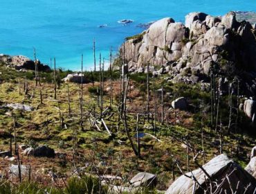 La Organización Galega de Comunidades de Montes prepara propuestas para la gestión de los montes vecinales