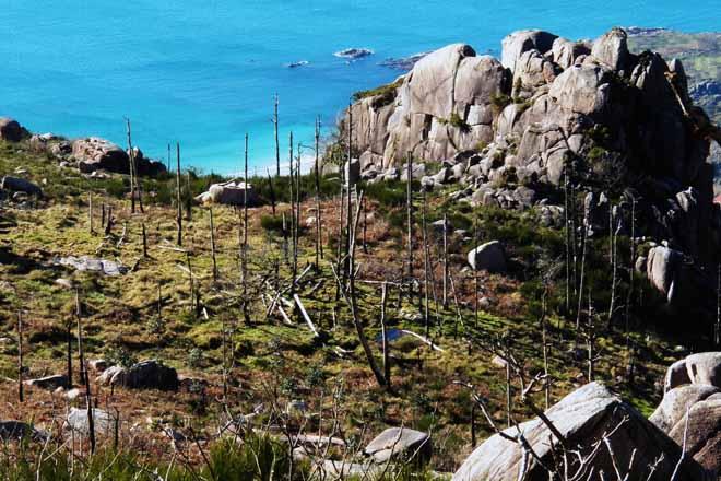 A Organización Galega de Comunidades de Montes prepara propostas para a xestión dos montes veciñais