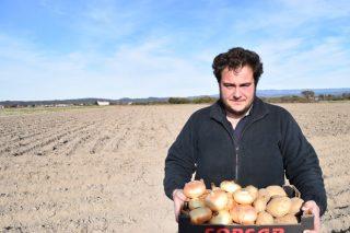 Agrocebola: Un exemplo de diversificación na comarca da Limia