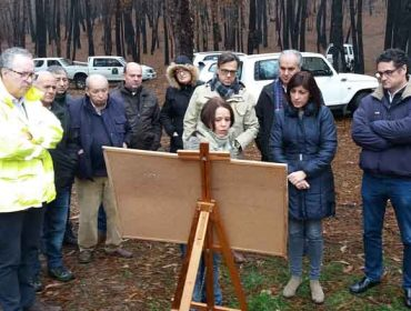 Medio Rural valora la propuesta de un plan de restauración de montes quemados