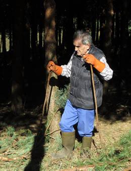Fernando Molina, nunha parcela forestal da familia.