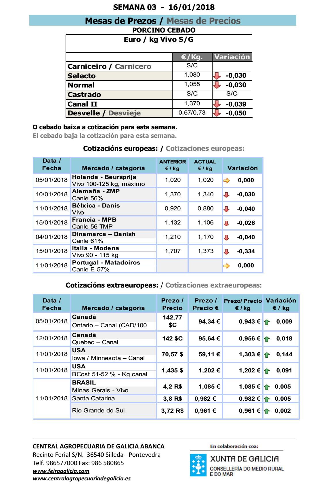 SILLEDA_PORCINO_XANEIRO_18_2