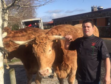 Un restaurante de Lalín compra 5 bois por algo máis de 40.000 euros