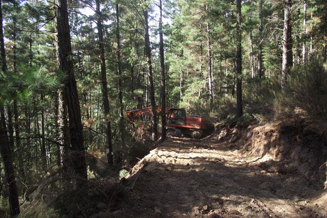 Vilar de Frades traballos forestais