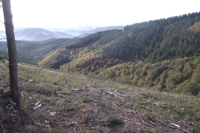 Monte da Sofor Vilar de Frades