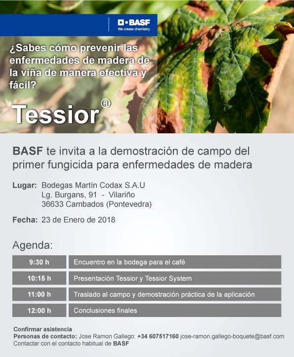 BASF presentará en Galicia o primeiro funxicida para enfermidades da madeira en viñedo